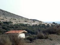 Visita-al-jardin-botanico