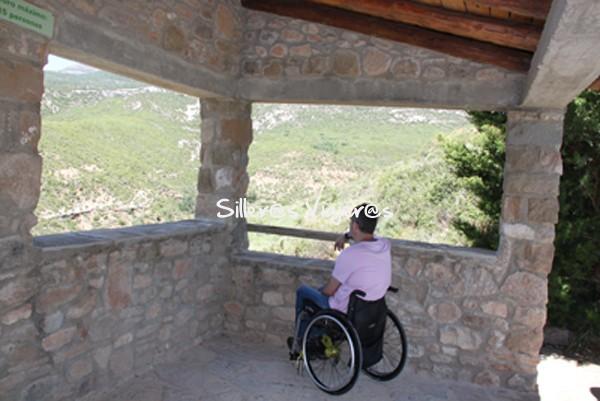 Miradores accesibles y cubiertos del Parque