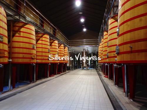 Bodega de vino Marques de Riscal