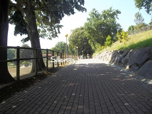 Itinerario accesible dentro de Presalde