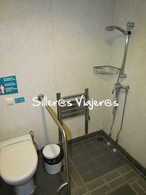 Ducha del baño accesible