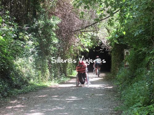 Entrada al túnel repleta de vegetación