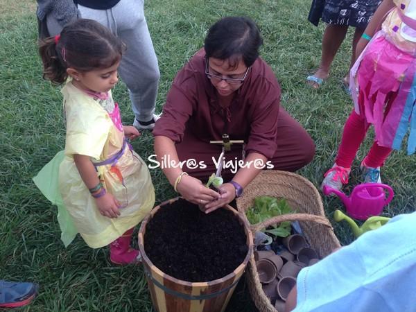 Actividades para niños, plantar plantas.