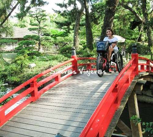 Paseo con mi batec por un jardín japones
