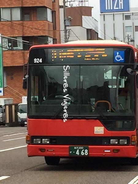 Autobuses adaptados señalizados.