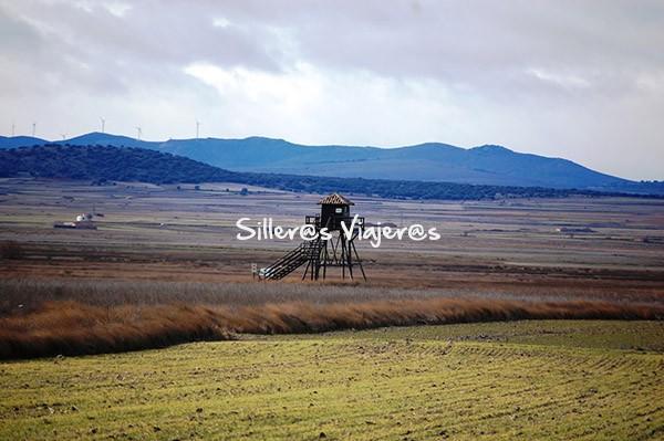 Hide observatorio de Gallocanta