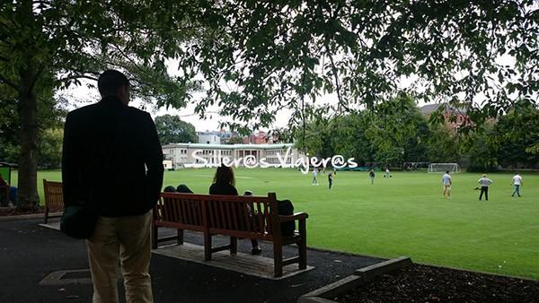 Campo de hierba universitario