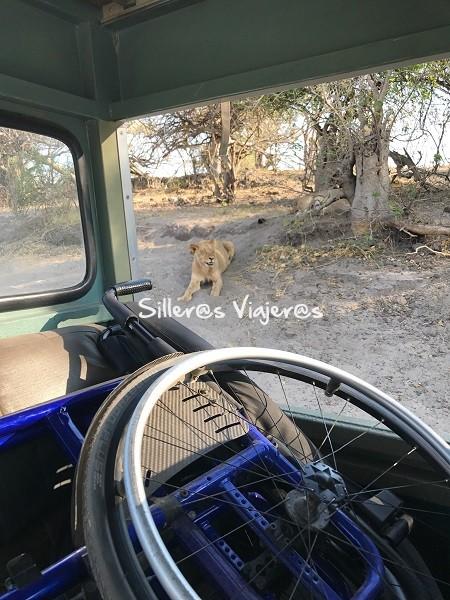 Coche en el safari
