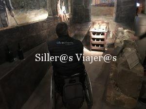 El juego de la rana con silla de ruedas