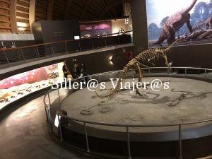Rampas de acceso en todo el museo