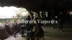 Grupo de silleros frente a una pecera