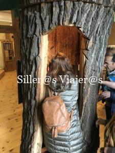 Nuria, introduciendose en el tronco de un árbol