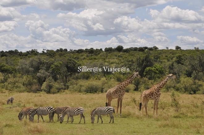 Parque nacional Amboseli