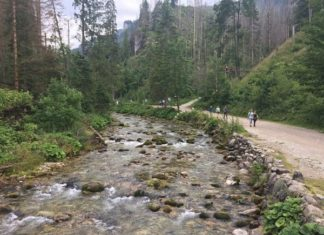Valle Strazyska