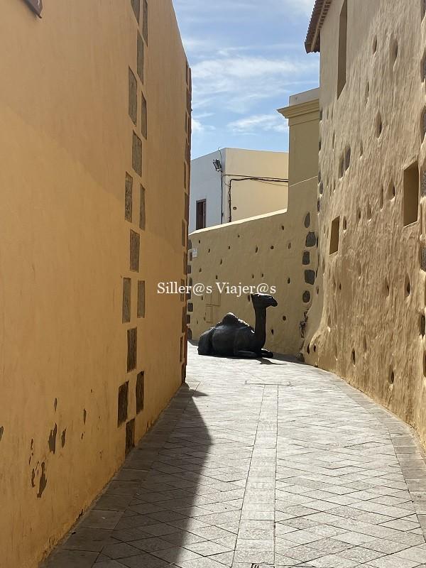 Estatua de un camello en una callejuela