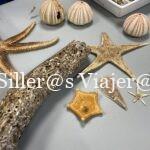 ejemplares marinos