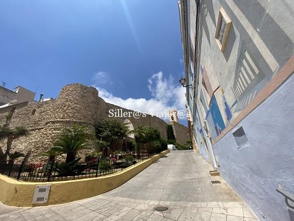 Muralla y Torre de la Peca