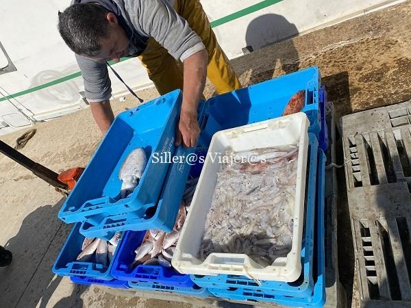 Pescadores descargando la pesca del día